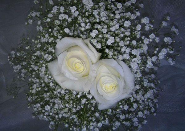 Las flores perfectas para tu boda 3