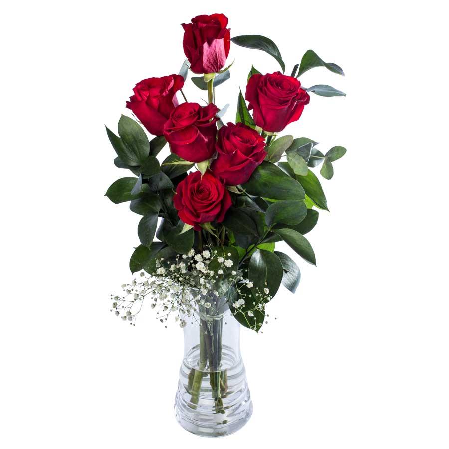 6 Rosas Rojas Floresmariadelpradoes