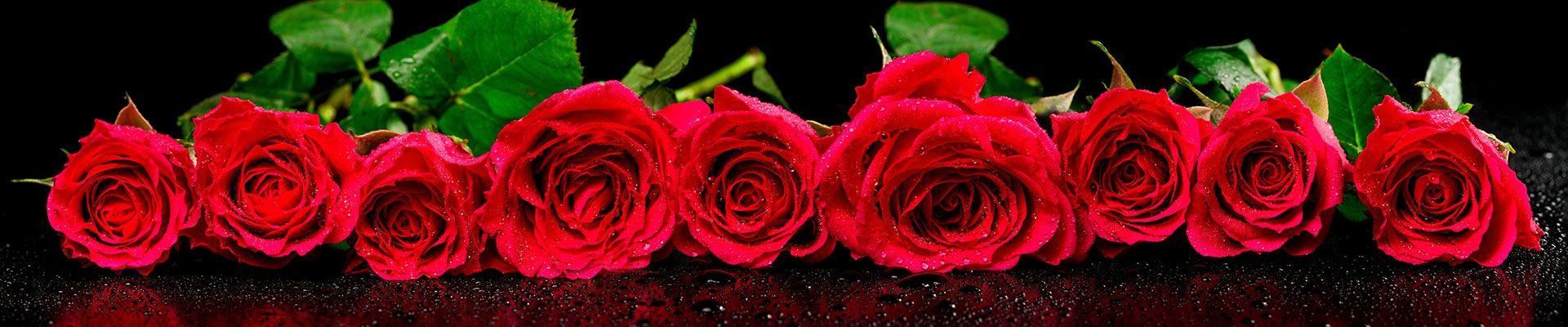 hero rosas