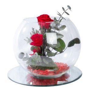 rosas-preservadas-composición-redonda-cristal